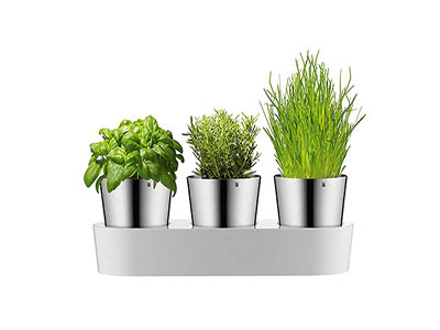 Planter For Herbs Set Of 3 Pots