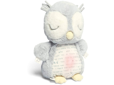 Light & Sounds Sensory Toy- Owlbie