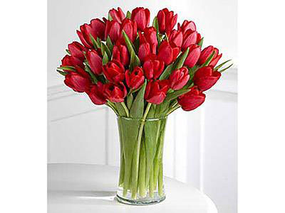 Red Tulips 30