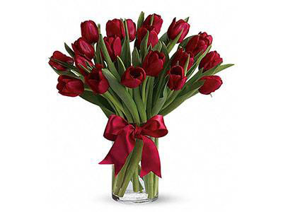 Red Tulips Bouquet (20)